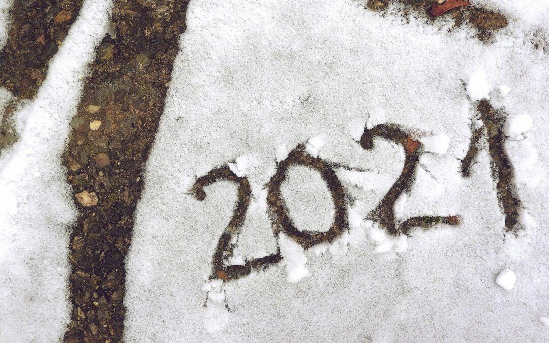 Source Animale démarre en janvier 2021